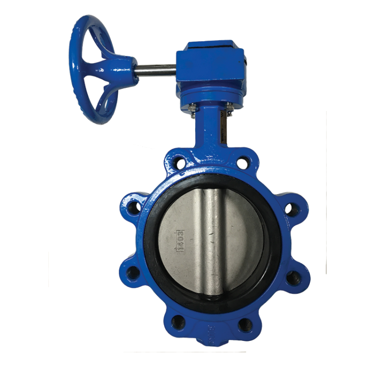Watts Butterfly Valve  Lug Type Gear Operated